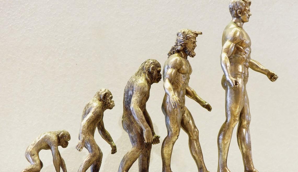 evolution-4107273_1920