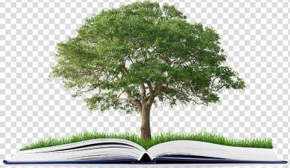 publishing-book-tree-stock-photography-organization-book