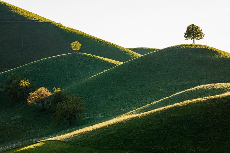 stromy-a-kopce-642